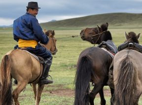 Horse Riding Experiences -Another World Adventures