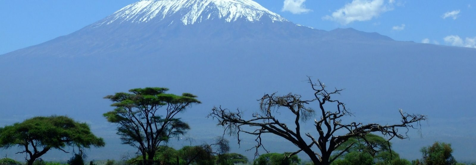 Small Group Adventure to Kilimanjaro Canva