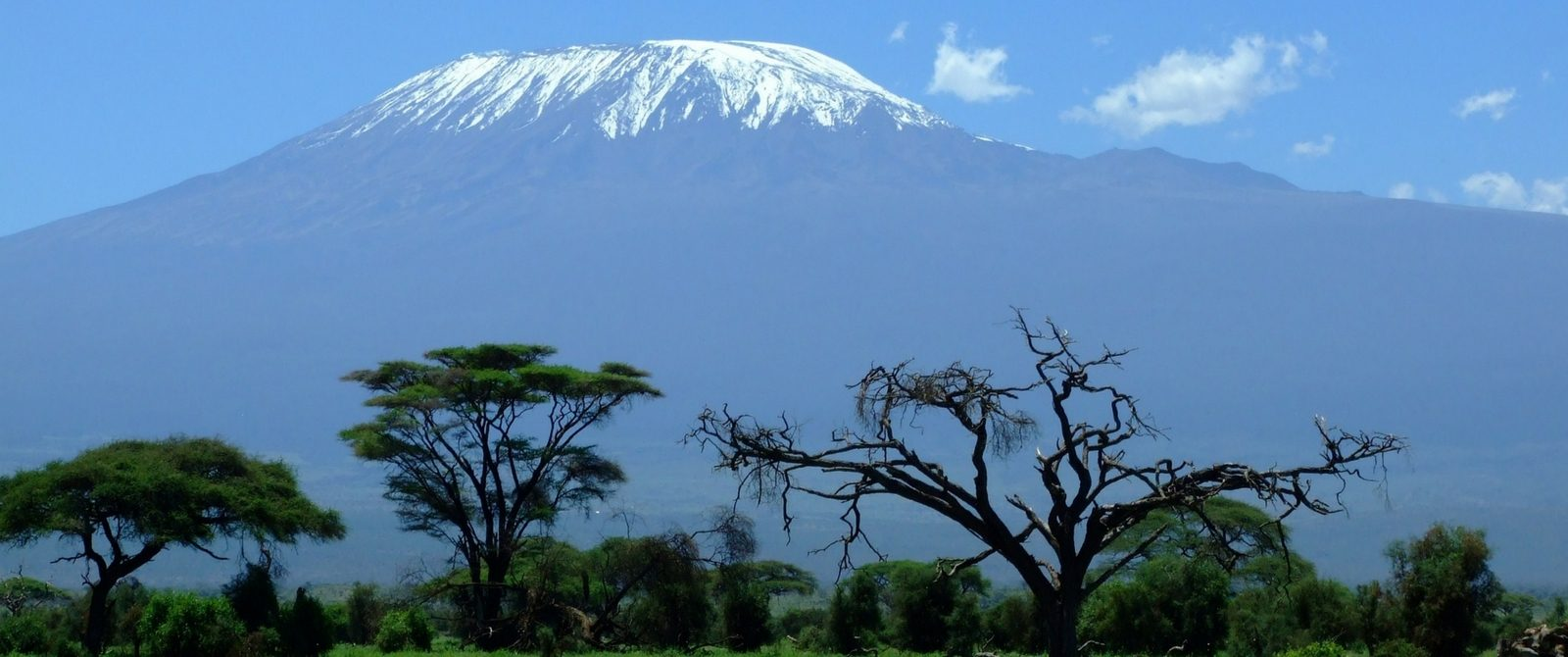 Small Group Adventure to Kilimanjaro Canva