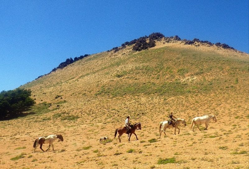 Horse Ride Across the Andes _1