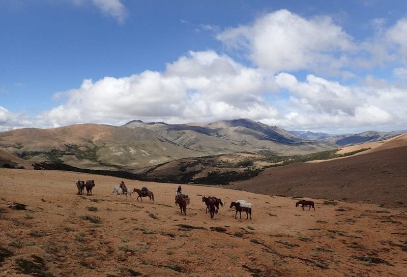 Horse Ride Across the Andes _6