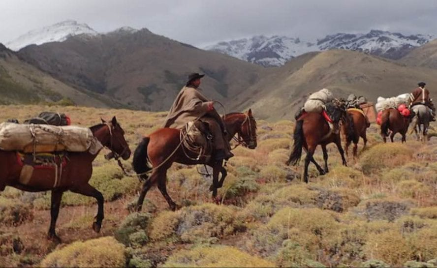 Horse Ride Across the Andes _8
