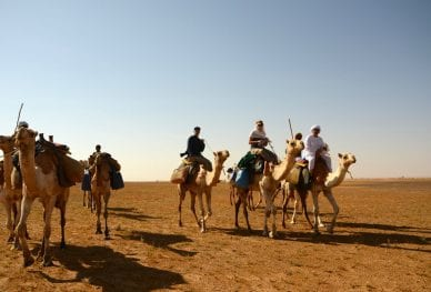 Challenging expeditions - Sudan Bayuda Desert Trek
