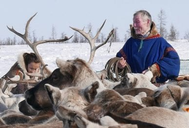 Challenging expeditions - Nenets