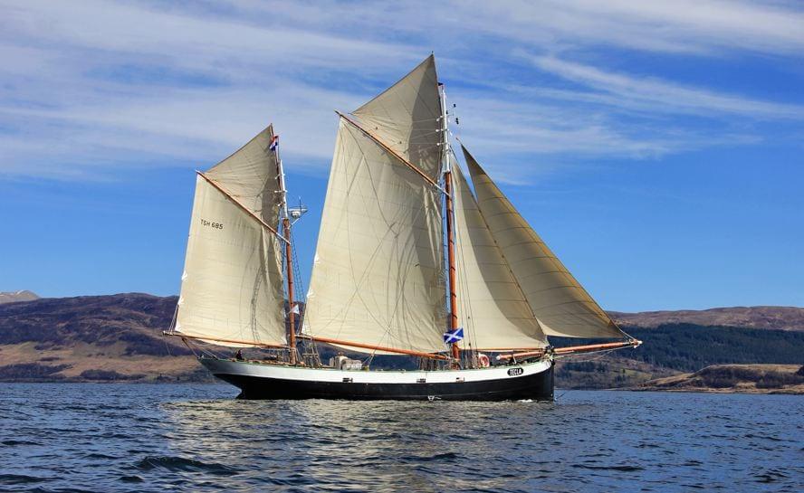 orkney sagas 11