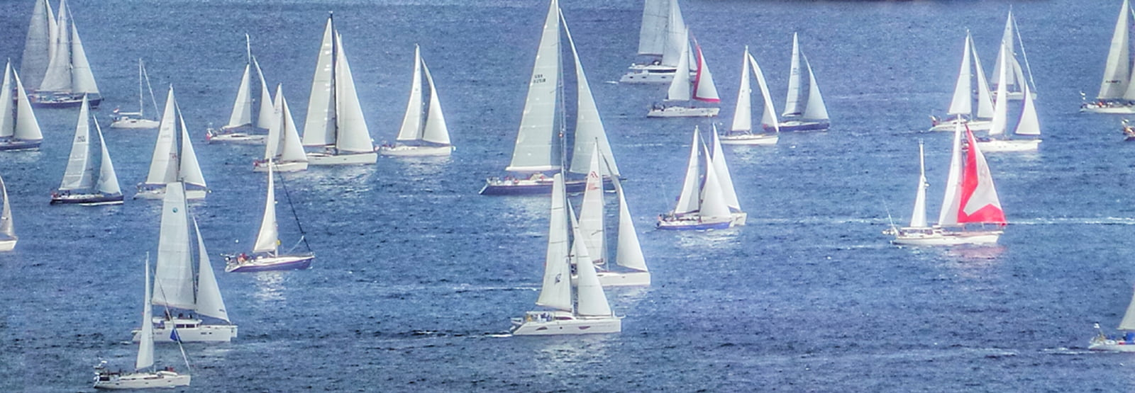 • Sail in the ARC from the Canaries to the Caribbean