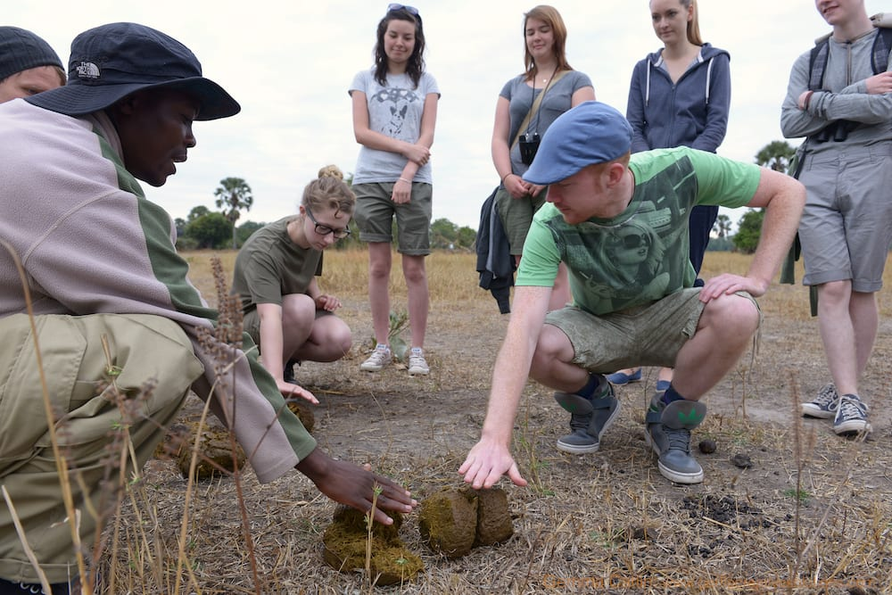 Tracking lesson on safari – LR.GC