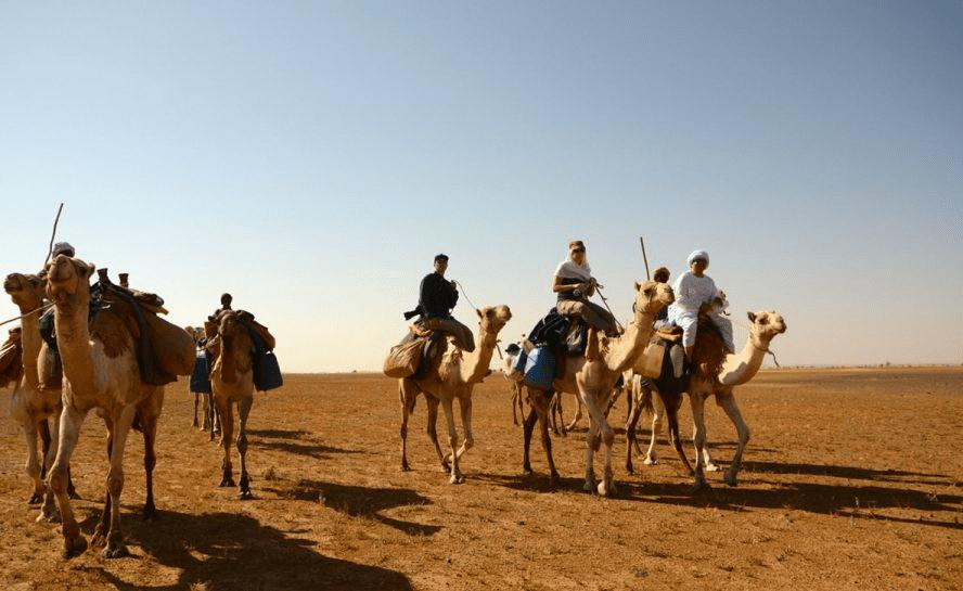 Sudan camels trek