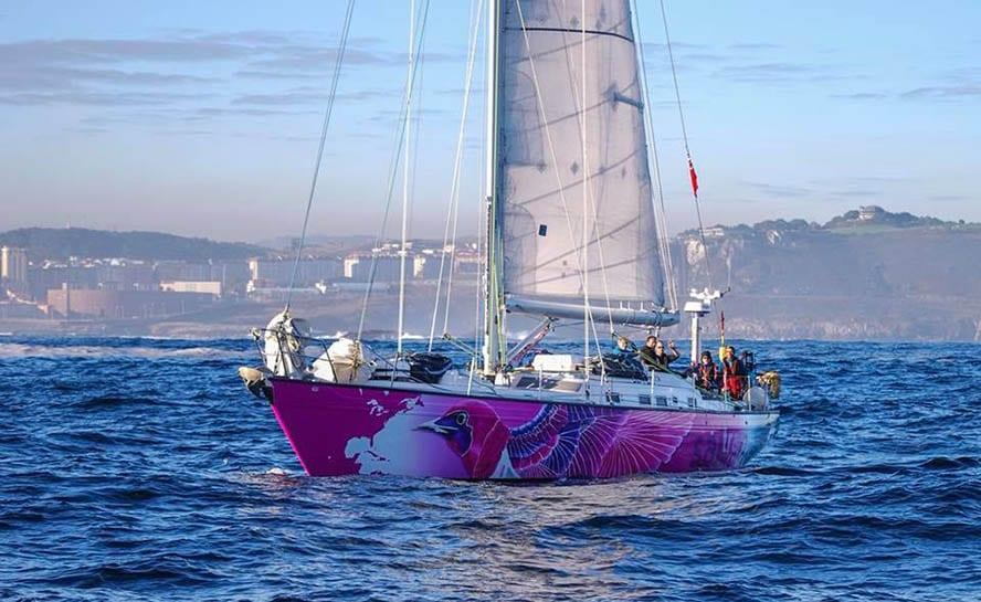 Yacht starling