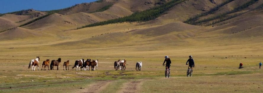 Cycling-in-Mongolia-another-world-adventures-image-4