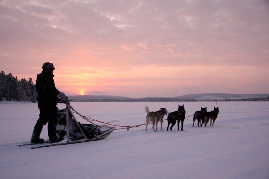 Finnish-Dogsledding-Adventure-another-world-adventures-image-2