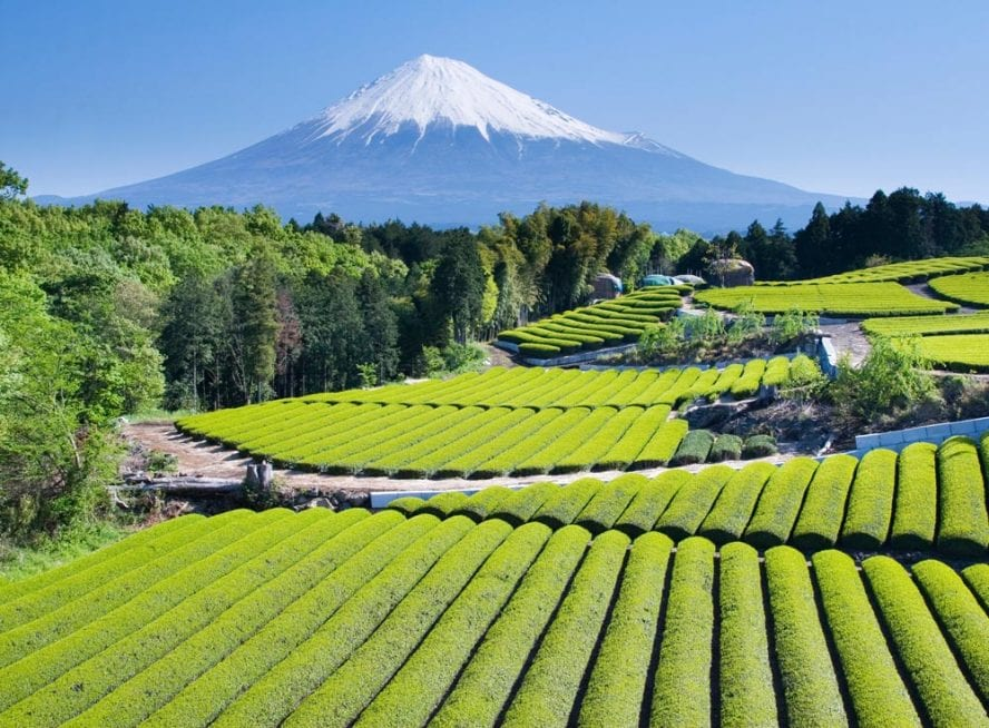 Mt-Fuji-the-Japanese-Alps-another-world-adventures-image-9