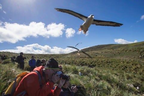 Montevideo – Falklands – Punta Arenas1