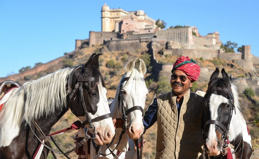 Horse-India-Festive-Pal-1