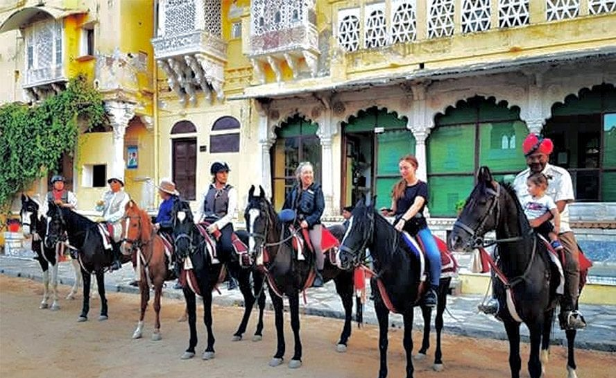 Horse-India-Festive-Pal-2