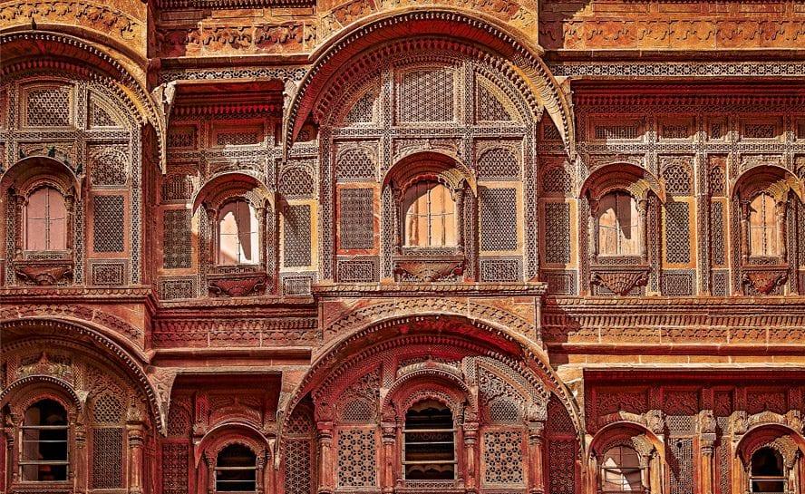 Horse-India-MMarwar-11-