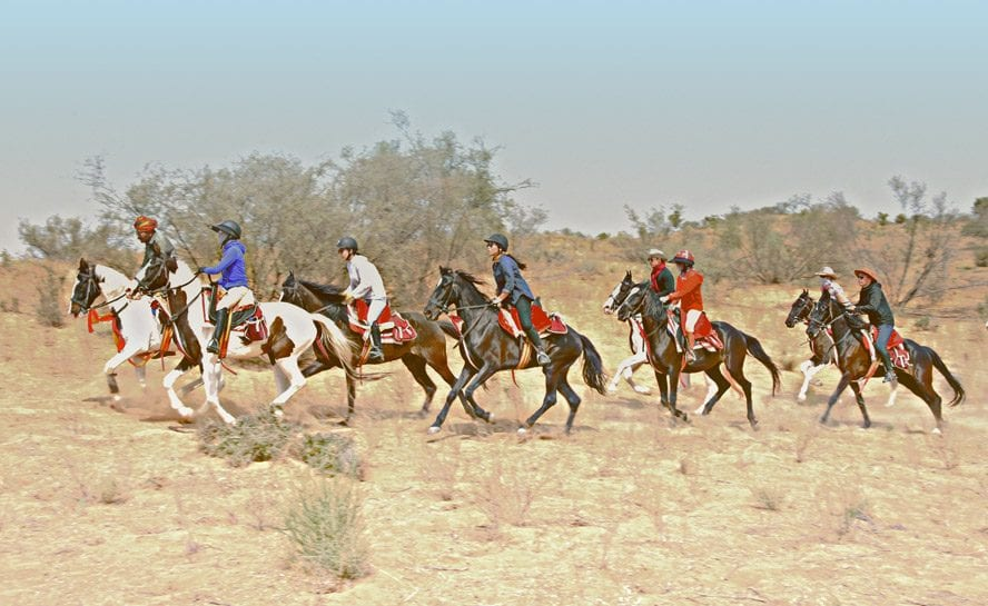 Marwar horse riding trip