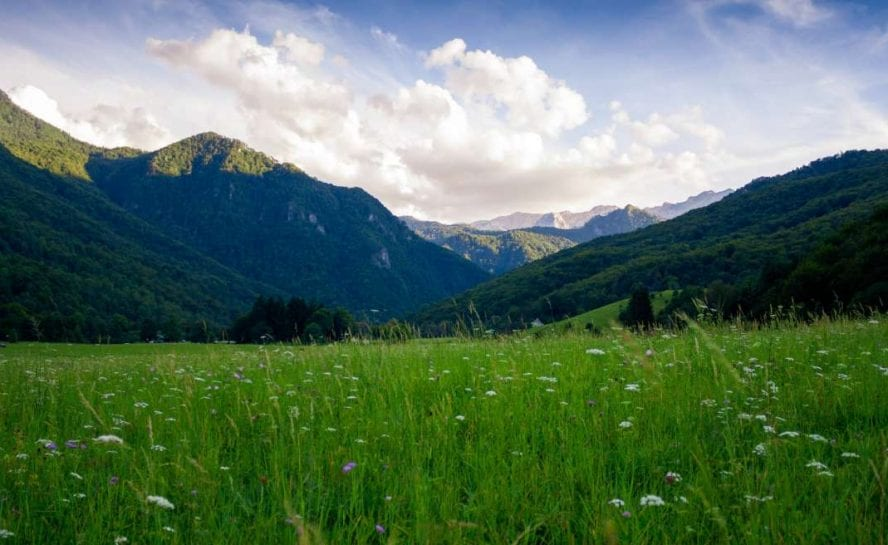 Protecting-nature-Adventure-travel-Rewilding